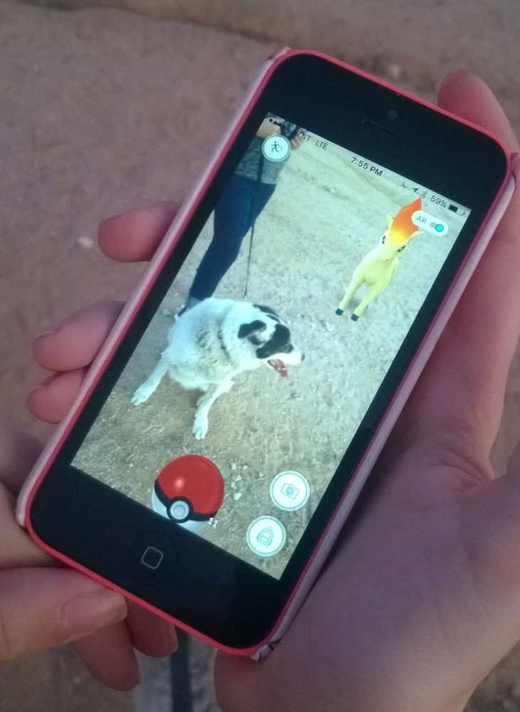 dog and pokemon go