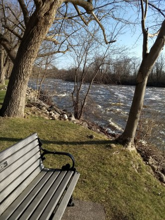 Bench by the river