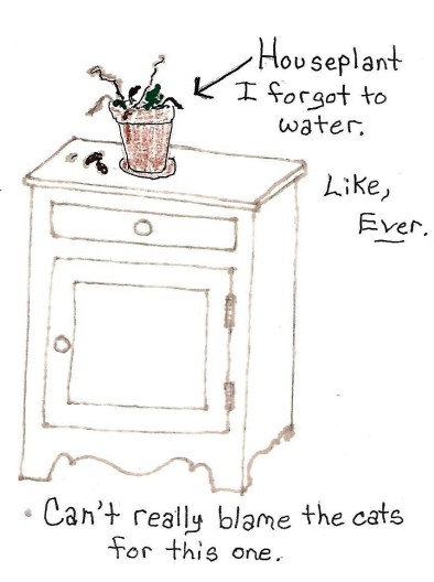 birdseed cabinet