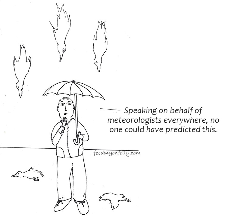 drawing of a weatherman