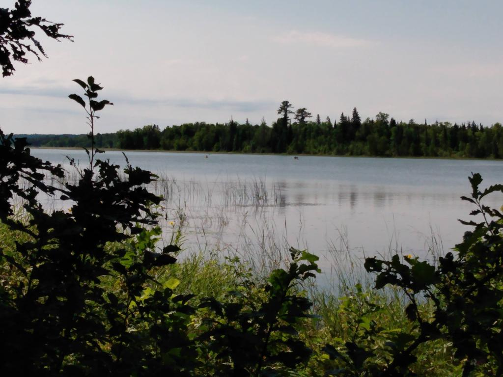 image of itasca lake