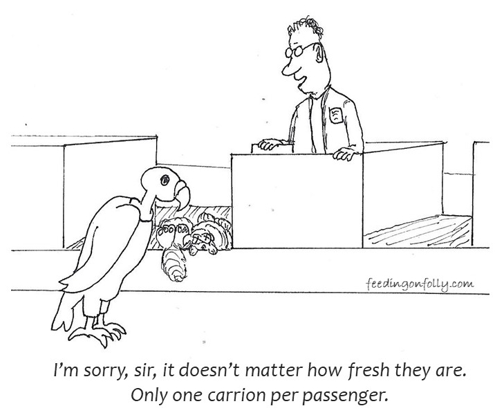 comic of vulture at the airport