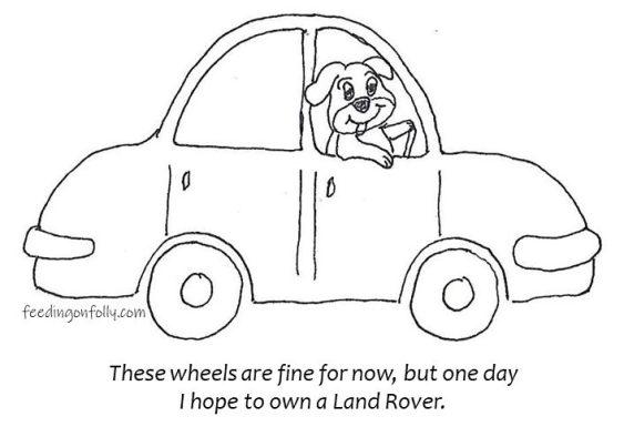drawing of dog driving car