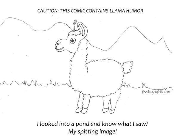 drawing of llama