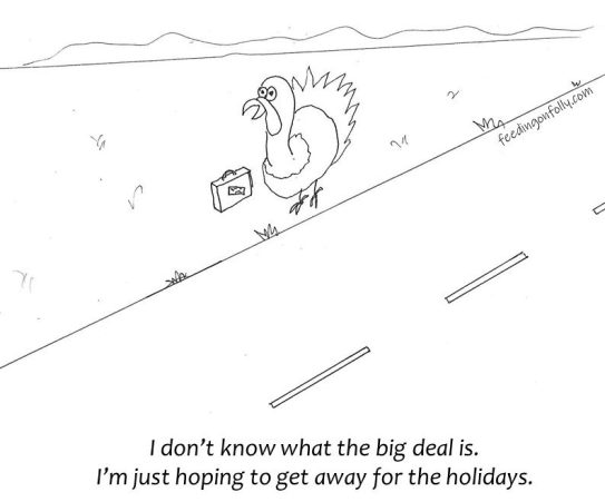comic drawing of turkey by road