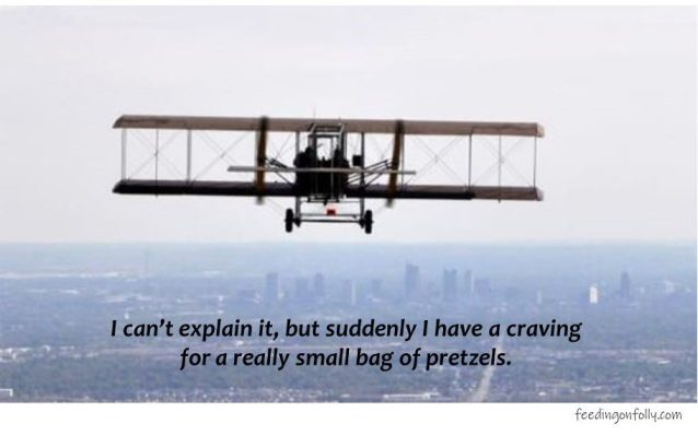 picture of wright brothers plane with caption