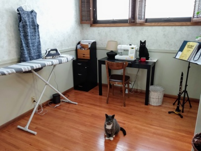 sewing room with cats